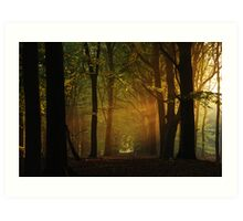 In the hazy morning forest again. Art Print