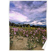 Fiori e nuvole Poster