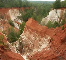 Providence Canyon by Bob Hardy