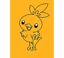 Torchic! [#255] Photographic Print