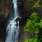 Wangi Falls by Thomas Peter