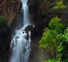 Wangi Falls by Thomas Peter