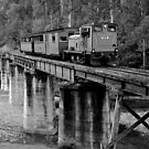 Walhalla Goldfields Railway   BW by DavidsArt