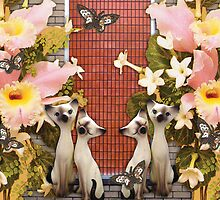 Kittens and Flowers and Butterflies, O My! by zoe trap