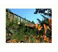 Mickelson Trail Bridge Art Print
