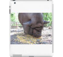 Pot Belly Pig Wrinkles iPad Case/Skin