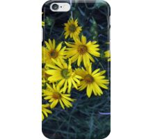 Cleveland Metroparks Zoo 14 iPhone Case/Skin