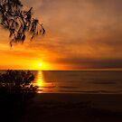 Darwin Beach by bettyb