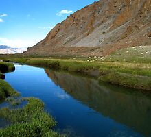 water and grassland. ladakh, india by tim buckley   bodhiimages