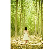 Walking in the forest Photographic Print