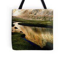 grasslands. ladakh, northern india Tote Bag