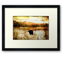 spirit flown Framed Print