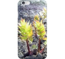 Plant#11 iPhone Case/Skin