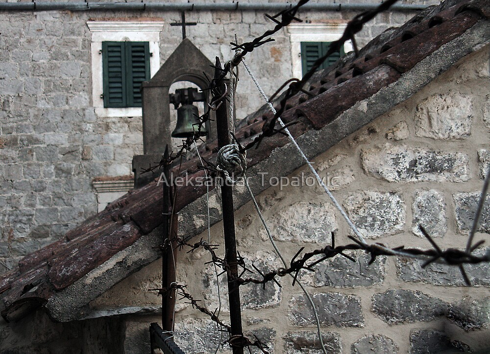 Old Fence by Aleksandar Topalovic
