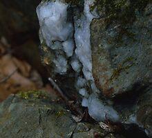A Peek of Quartz by mmariephoto