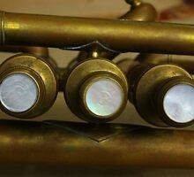 Trumpet Keys by rhamm