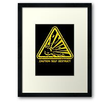 Self Destruct Framed Print