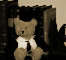 Teddy the Professor by Evita