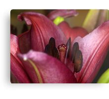 Valley of the Lily Metal Print