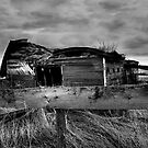 In Ruins B&W by Mindy McGregor