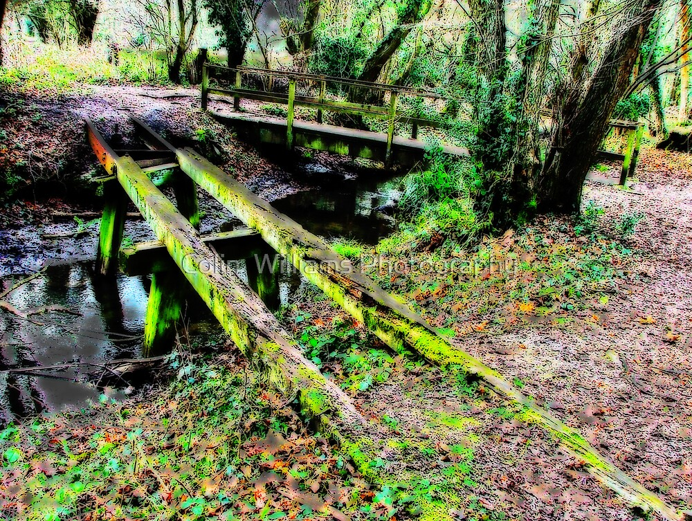 Old Bridge, Chilworth Gunpowder Mills  by Colin  Williams Photography
