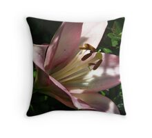 Natural Lighting 2 Throw Pillow