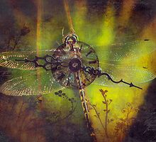 Time Flies by Karen Scrimes