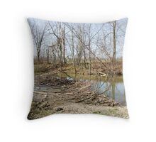 Road Closed! Throw Pillow