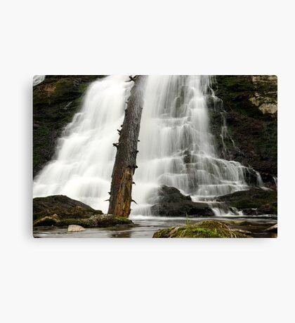 Dead Creek Falls Canvas Print