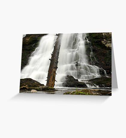 Dead Creek Falls Greeting Card