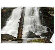 Dead Creek Falls Poster