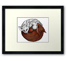 red fox white fox Framed Print