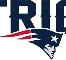 New England Patriots Logo by Misco Jones