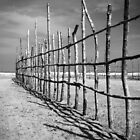 Beach Fence by Carlos Restrepo