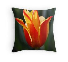 living flame Throw Pillow