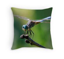 Bug eyes Throw Pillow