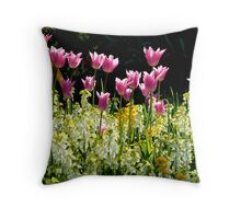 Lower Gardens, Bournemouth 3 Throw Pillow