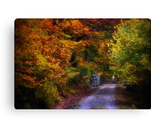 Black Forest in Automn Canvas Print