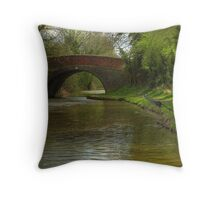 The Fisherman - Ashby Canal Throw Pillow