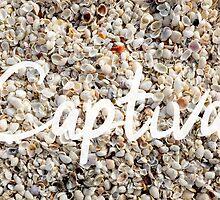 Captiva Island Florida Seashells by Edward Fielding