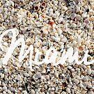 Miami Seashells by Edward Fielding