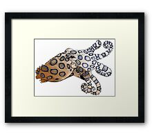 Blue-Ringed Octopus Color Framed Print