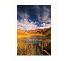 Golden Gate National Park Art Print