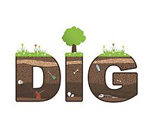 Dig Photographic Print