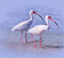 Shore Walkers by Carolyn Staut