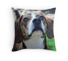 Curious Hank  Throw Pillow