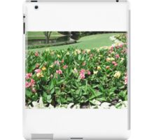 Colorful Flowers at Disney World iPad Case/Skin