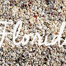 Florida Seashells by Edward Fielding