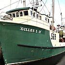 Green Boat by terrebo
