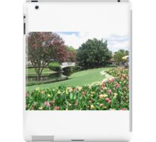 Fairy Tale Landscape at Disney World iPad Case/Skin